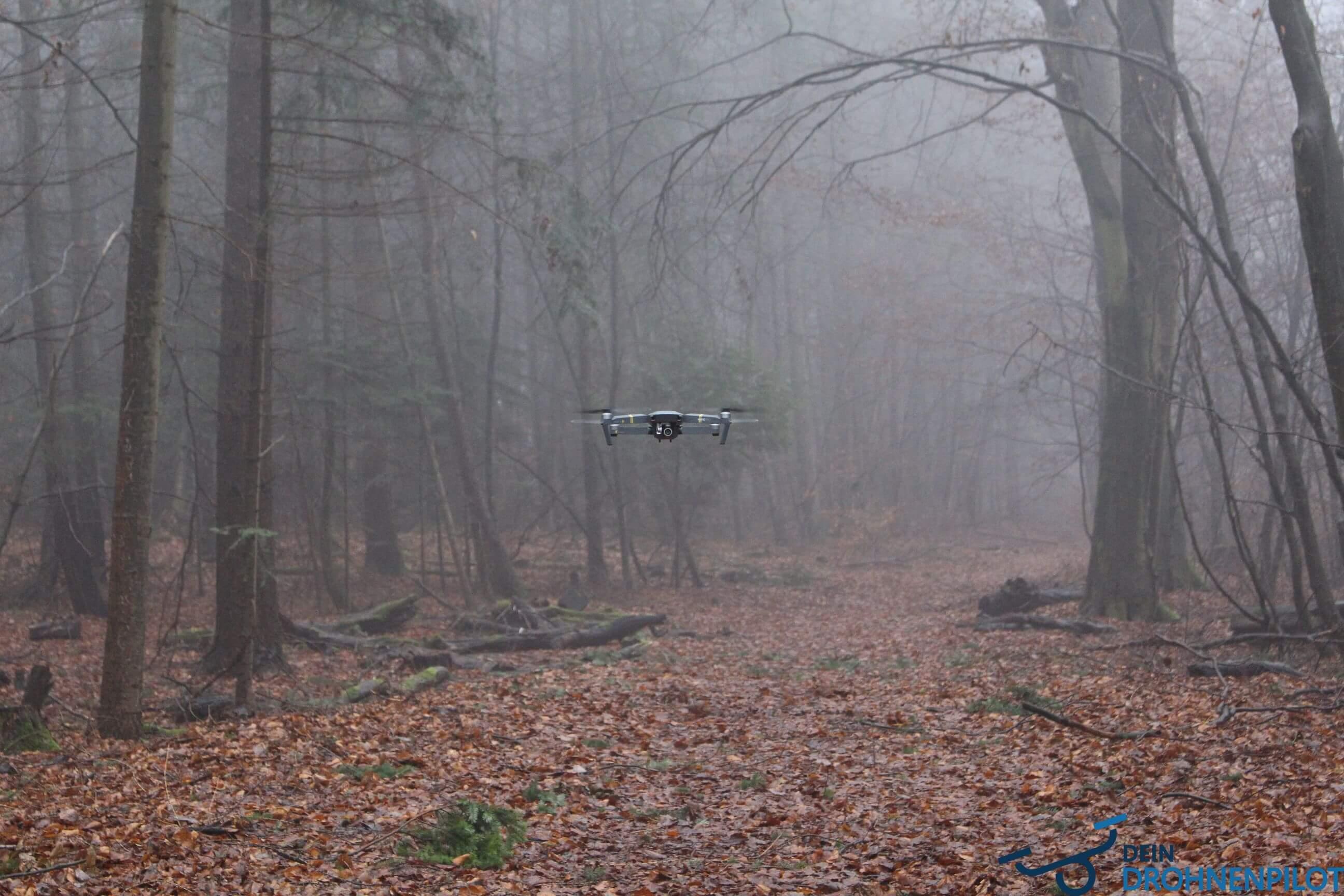 Drohnenverordnung wo darf ich fliegen